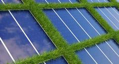 Curatarea vegetatiei panouri fotovoltaice