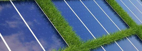 Taierea ierbii in parcurile solare